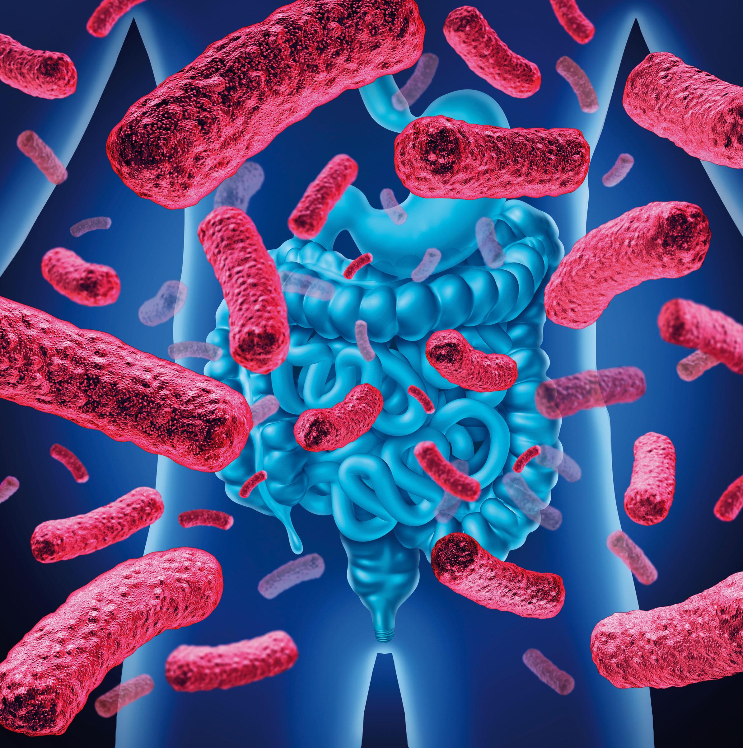"""Nosso sistema imunológico deve nos defender de agentes infecciosos externos, mas, às vezes, algum fator faz com que ele ataque nosso próprio corpo e cause doenças conhecidas como """"autoimunes""""."""